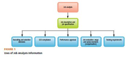Human resource experience the basics of job analysis gary dessler the supervisor or human resources specialist normally collects one or more of the following types of information via the job analysis ccuart Choice Image