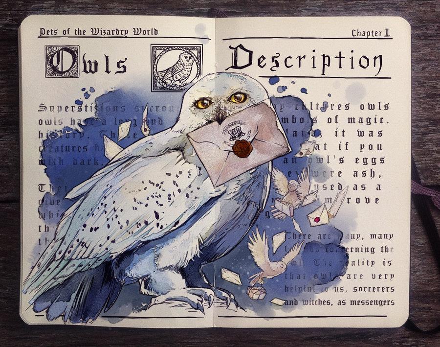 07-Pets-of-the-Wizarding-World-Owls-Gabriel-Picolo-kun-Harry-Potter-Moleskine-Drawings-of-Wizard-Spells-www-designstack-co