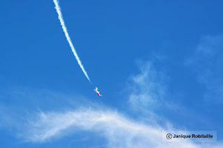 spectacle aerien avions snowbirds