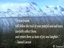 Quote by Sannel Larson