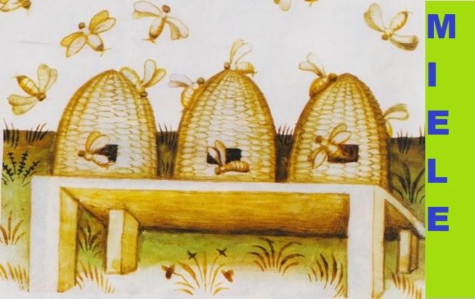http://www.torreggiani.com/news/intra/immagini/miele1.jpg