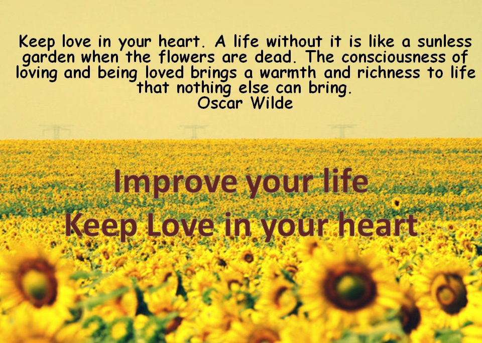 Image result for love in your heart  quotes \