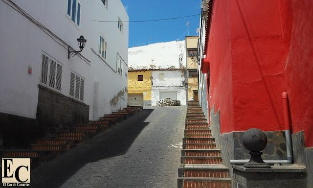 Poda indiscriminada en Arucas, Gran Canaria
