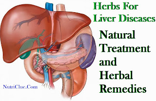 Herbs For Liver Diseases - Natural Treatment and Herbal Remedies