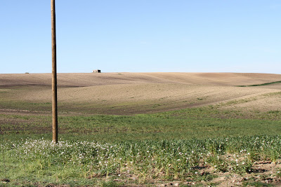 Farmland Outside of Matera