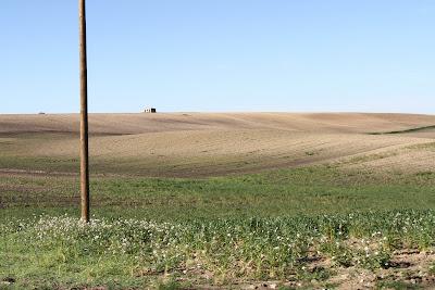 Farmland Outside of Matera
