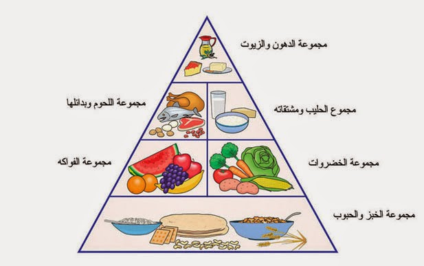 الأغذية و أنواعها عند الإنسان