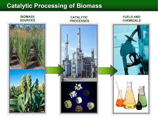 procesos de biomasa
