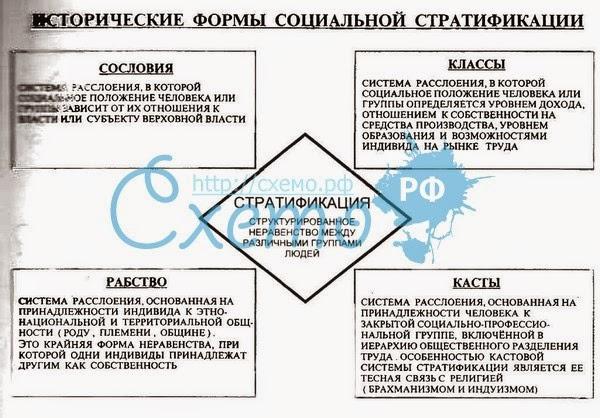 Социальная структура общества понятие социальная структура социальная стратификации модели стратификационных систем