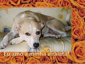 Belinha