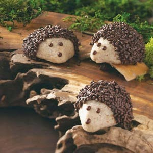 http://www.tasteofhome.com/recipes/chocolate-pecan-hedgehog-cookies