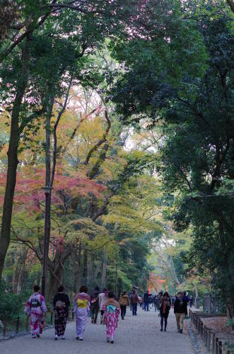 2013年糺の森の紅葉