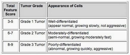 cancer grading