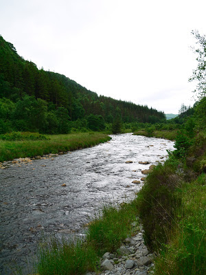 River, Hafod Estate