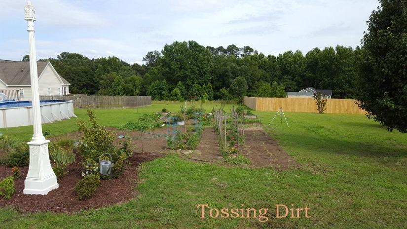 Tossing Dirt