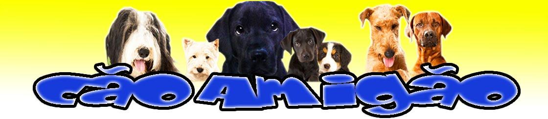 Cão Amigão