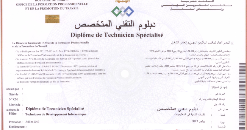 diplome de technicien specialise en developpement informatique
