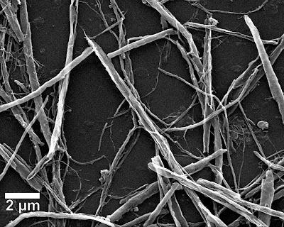 Nanotechnology nanoribbon Yt?