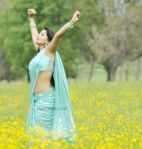 Anushka-shetty-saree-Damarukam-movie