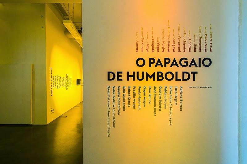 O PAPAGAIO DE HUMBOLDT