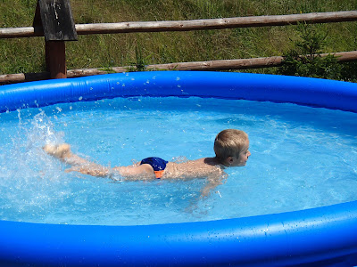 konie, kuce, pławienie koni w rzece, basen ogrodowy, dzieci w basenie