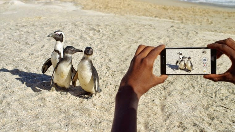 The 5 Best Camera Smartphones to Take Fine Photos