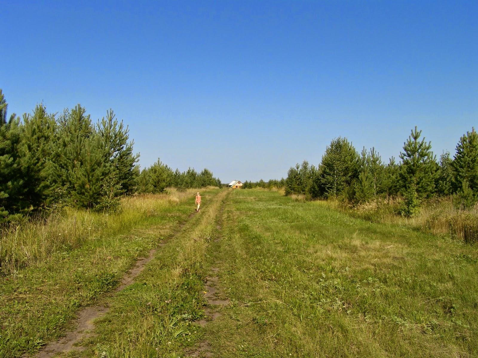 Курганская область, д. Елизаветинка, поселение Родники