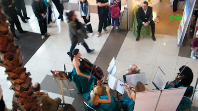 muzica nunta, Cvartet Anima