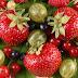 Remedios para la hipertensión arterial con ayurveda