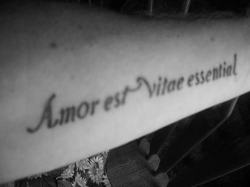 ideas for Latin quotes for tattoos regarding specific letters and or