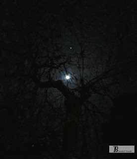 हिंदी कवितायेँ: रमा भारती - चाँद और रुका हुआ लम्हा #शब्दांकन