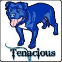 Check out our section at Tenacious Toys!