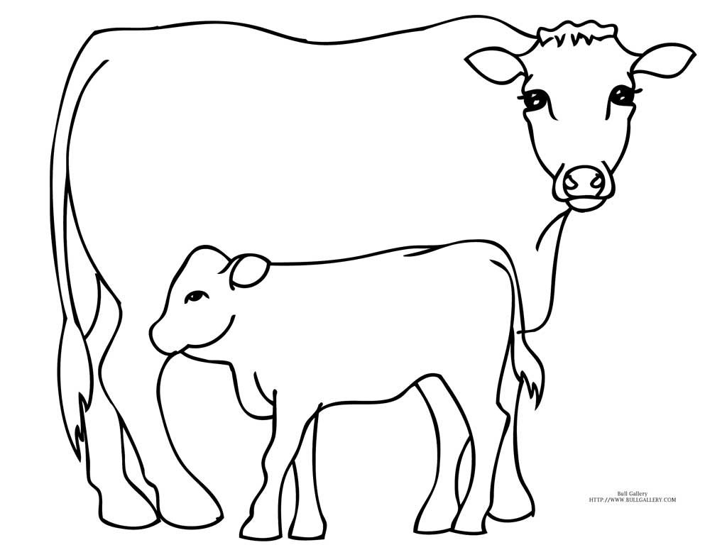 bull coloring pages - photo#9