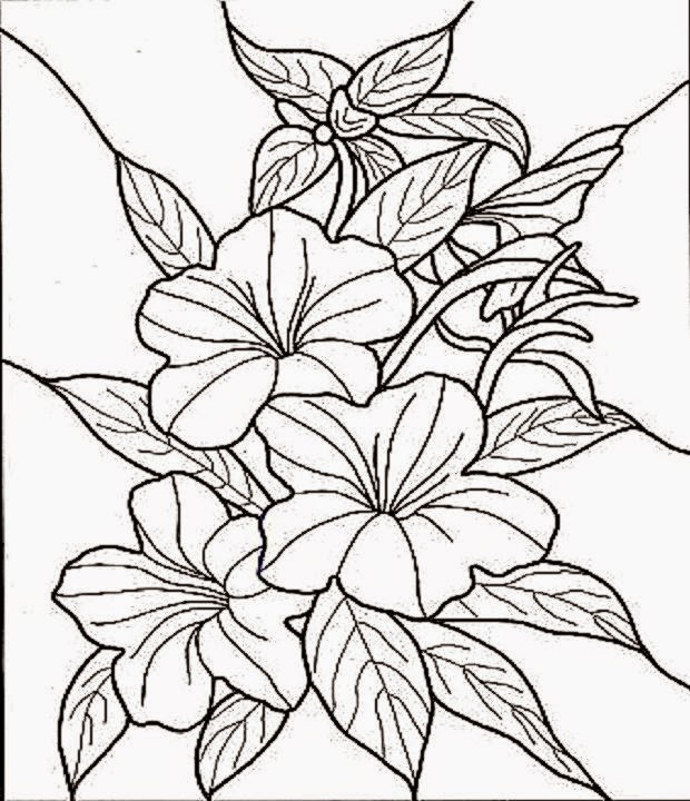 tropical flower coloring pages - stained glass coloring pages christmas