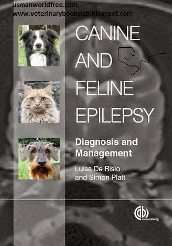 veterinarybookslab Canine and Feline Epilepsy Diagnosis and Management
