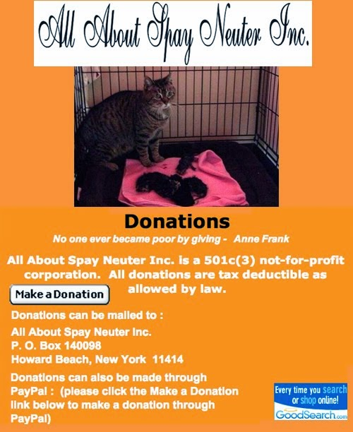 All About Spay Neuter, Inc.