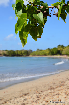 Martinique - Tartane - plage