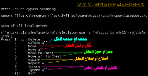 Best Way to Remove Viruses,Spyware-boot time scan avast