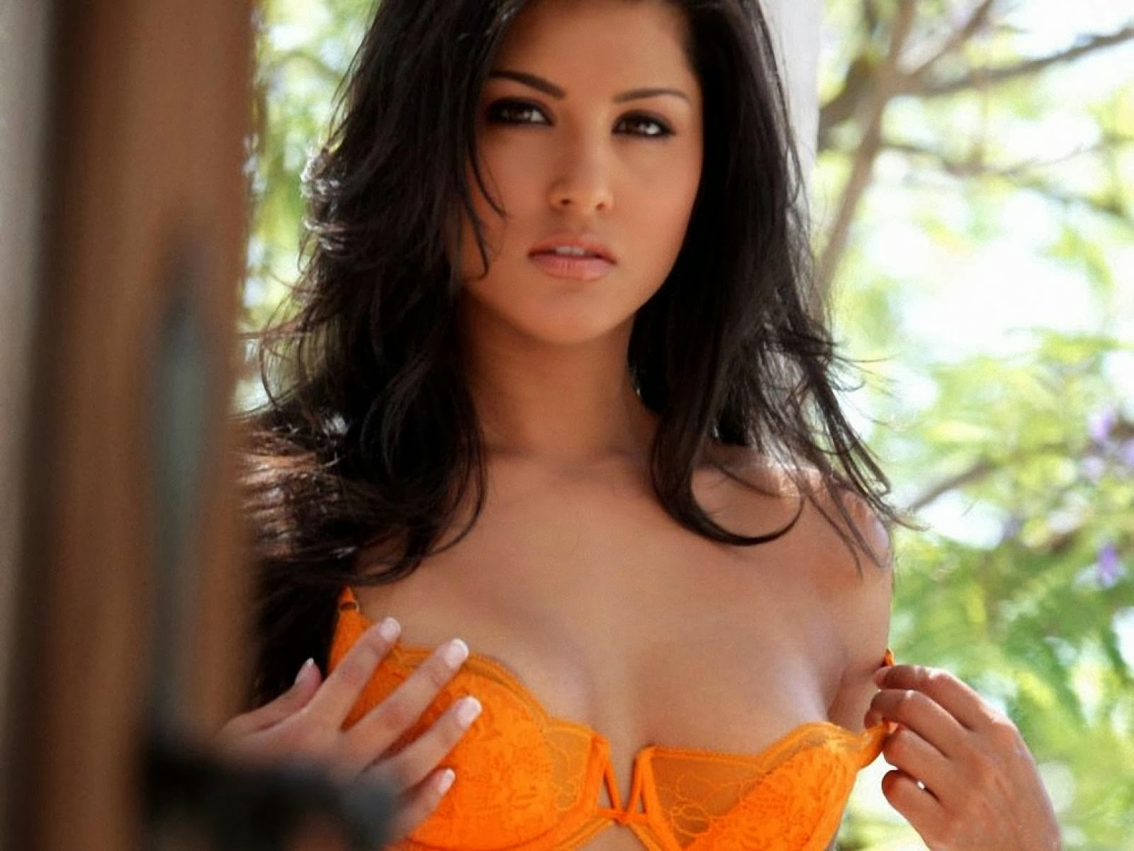 bollywood hollywood hd actress wallpapers: sunny leone hd wallpapers