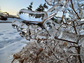 2013 Ice Storm Brampton, ON
