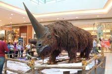 ParkshoppingCampoGrande recebe exposição  internacional de animais da Era Glacial