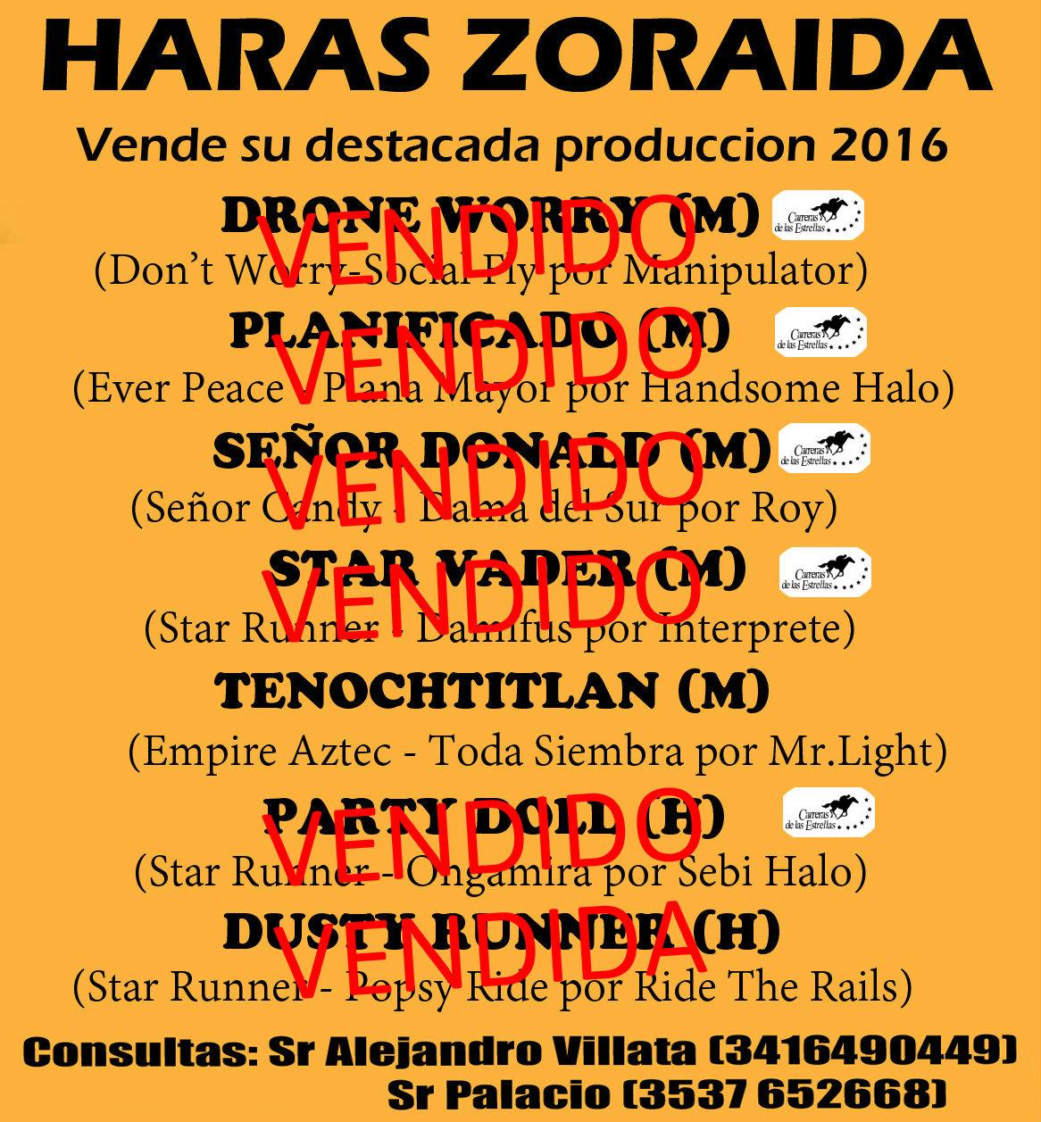 HS ZORAIDA PRODUCTOS 2016 E2