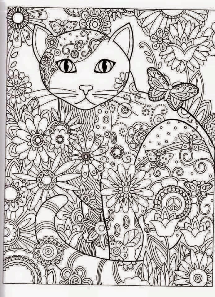 well known gatinhos para colorir wf08 ivango
