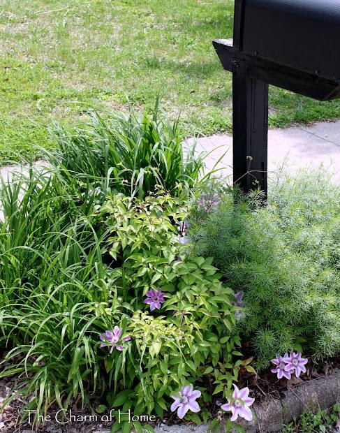 charm of home mailbox garden