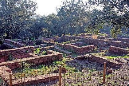 Estructura de cases allargades del poblat ibèric de la Torre Roja
