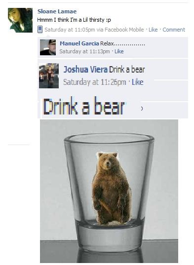 Drink A Bear