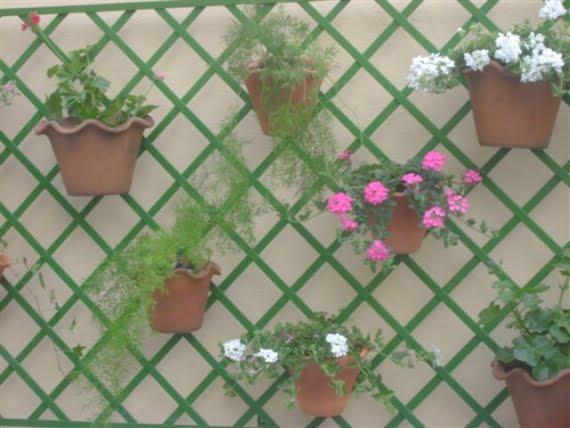 jardim vertical xaxim:aqui me pareceu que são madeiras e nelas penduradas os vasinhos