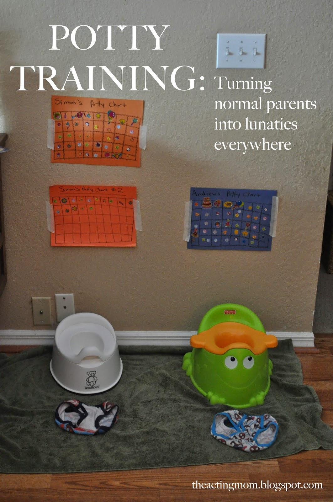 Potty Training: Turning normal Parents into lunatics everywhere via The Acting Mom