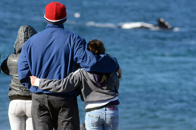 Whale watching in El Doradillo Puerto Madryn