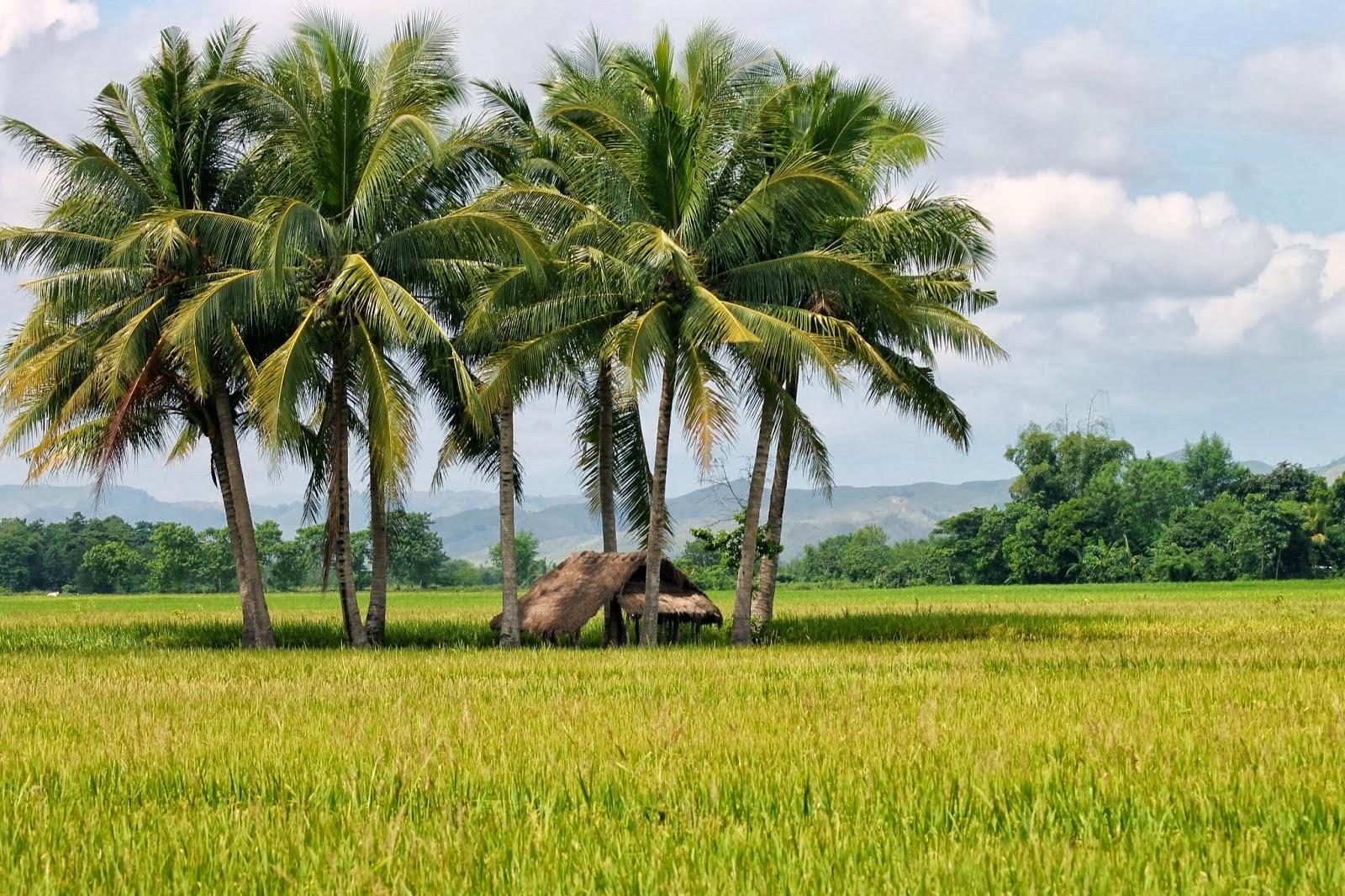Isabela Province Philippines